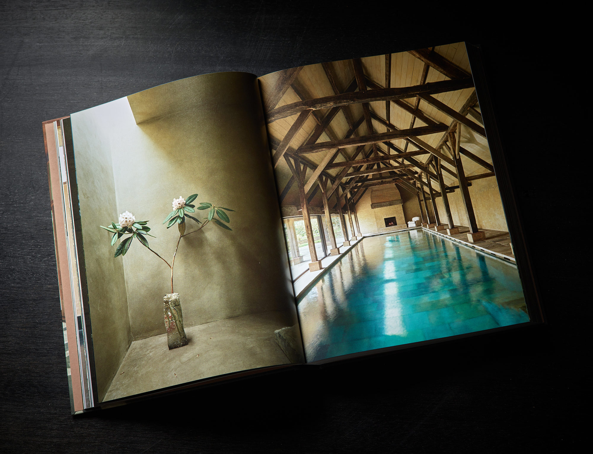 Portraits of Interiors book